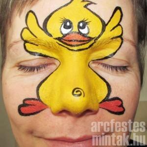 Kacsa arcfestés lépésről lépésre